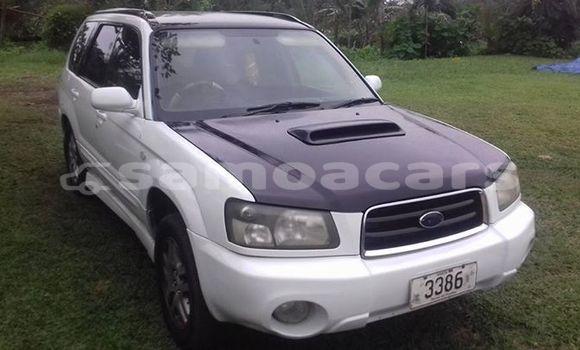 Buy Used Subaru Forester White Car in Apia in Tuamasaga