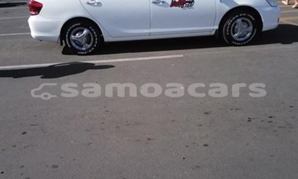 Buy Used Toyota Allion White Car in Apia in Tuamasaga