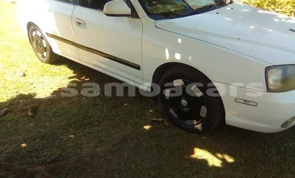 Buy Used Hyundai Elantra White Car in Vaitele in Tuamasaga