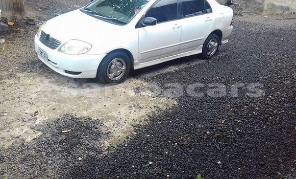 Buy Used Toyota Corolla White Car in Apia in Tuamasaga