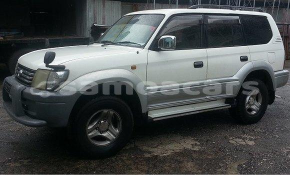 Buy Imported Toyota Prado White Car in Apia in Tuamasaga