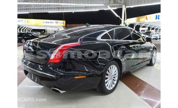 Buy Import Jaguar XJ Black Car in Import - Dubai in A'ana