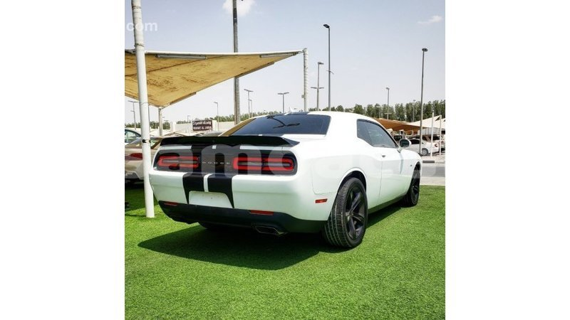 Big with watermark dodge challenger a ana import dubai 4489