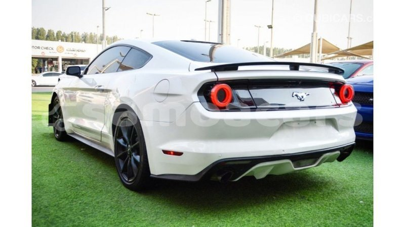 Big with watermark ford mustang a ana import dubai 5089