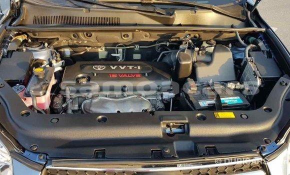 Buy Import Toyota RAV4 Blue Car in Import - Dubai in A'ana