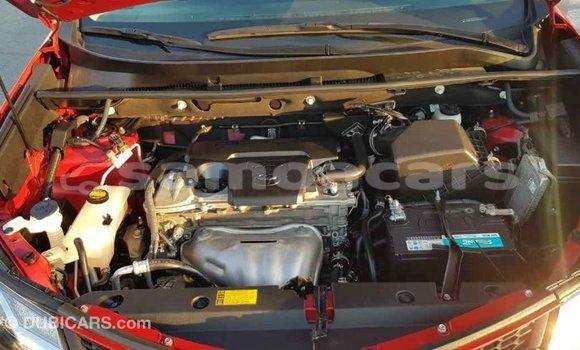 Buy Import Toyota RAV4 Red Car in Import - Dubai in A'ana