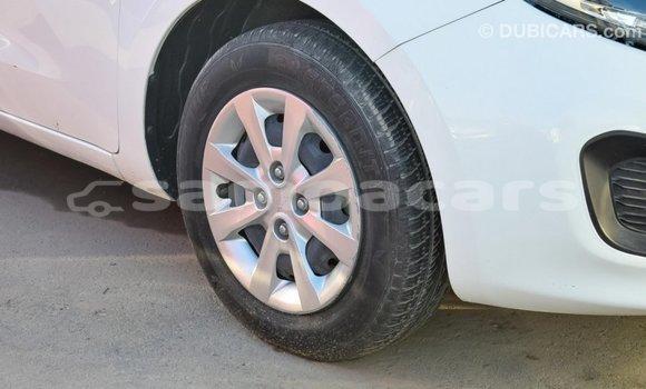 Buy Import Kia Rio White Car in Import - Dubai in A'ana