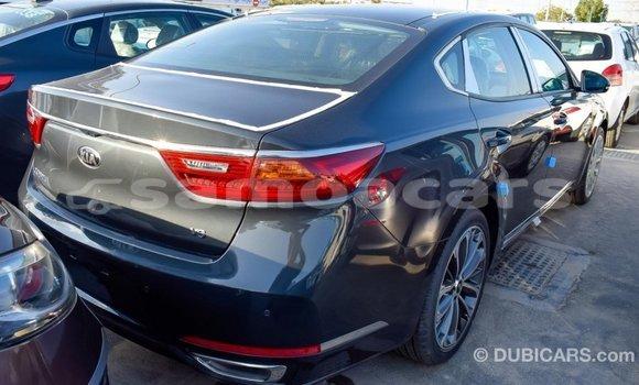 Buy Import Kia Cadenza Other Car in Import - Dubai in A'ana