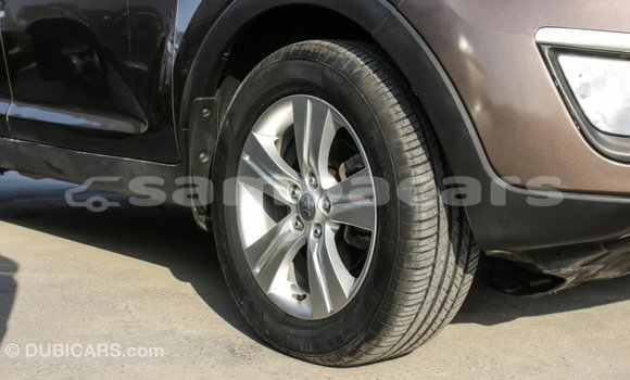 Buy Import Kia Sportage Brown Car in Import - Dubai in A'ana