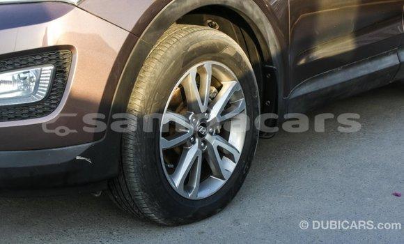 Buy Import Hyundai Santa Fe Brown Car in Import - Dubai in A'ana