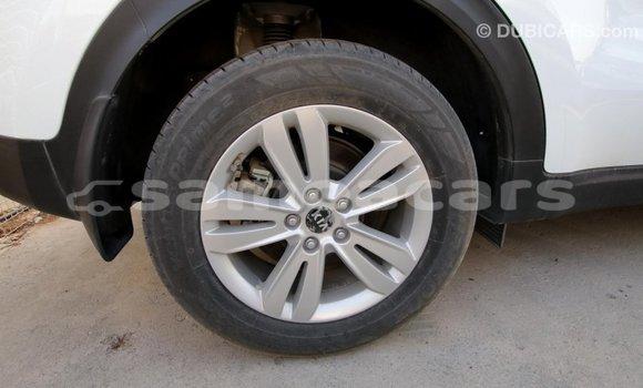 Buy Import Kia Sportage White Car in Import - Dubai in A'ana