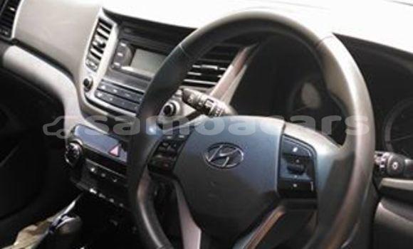 Buy Used Hyundai Tucson Other Car in Falelatai in A'ana
