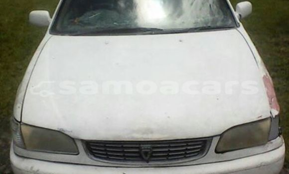 Buy Used Toyota Corolla Other Car in Apia in Tuamasaga