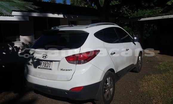 Buy Used Hyundai Tucson Other Car in Taga in Palauli